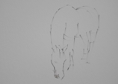 Horse Painting Step by Step 2