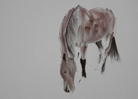 Horse Painting Step by Step 5