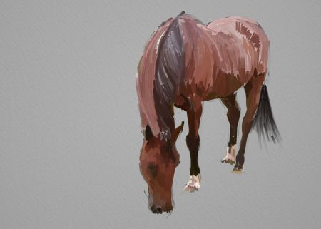 Horse Painting Step by Step 9