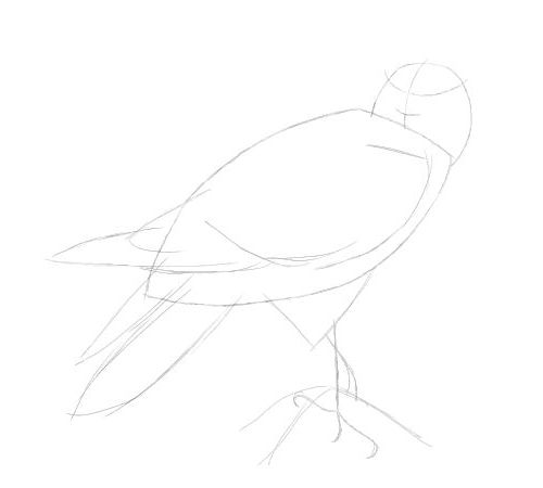 Eagle Drawing Tutorial.