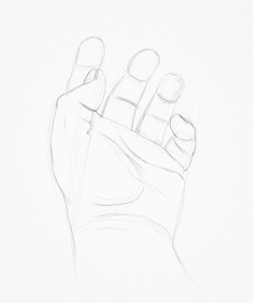male hand sketch in pencil