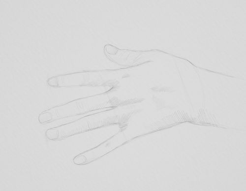 girl hand sketch in pencil
