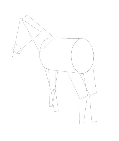 Horse Drawing.
