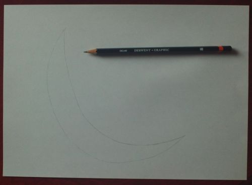 dolphin drawing guidelines 1