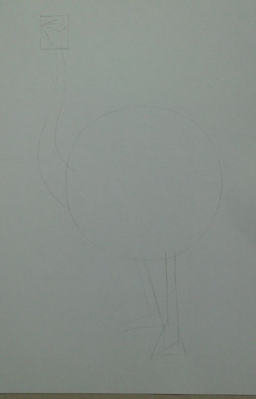 Drawing Lines With Oil Paint : How to draw an ostrich a line drawing tutorial