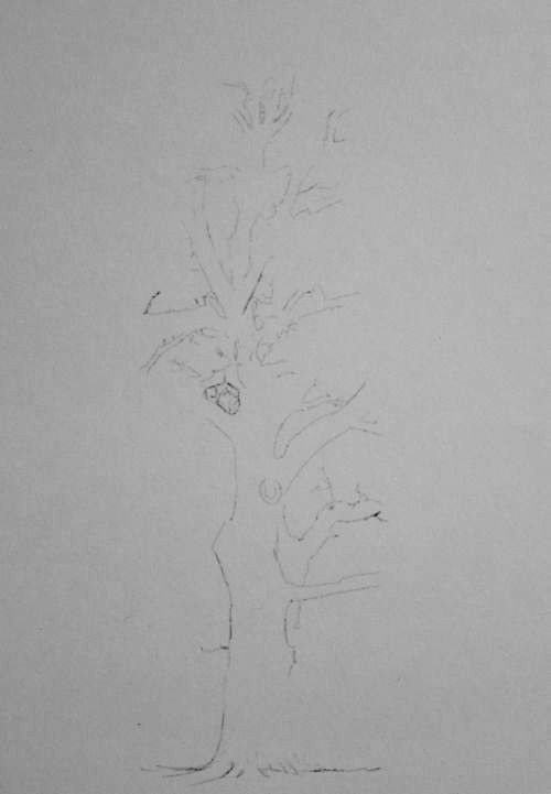 Tree Drawing  30