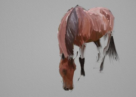 Horse Painting Step by Step 7