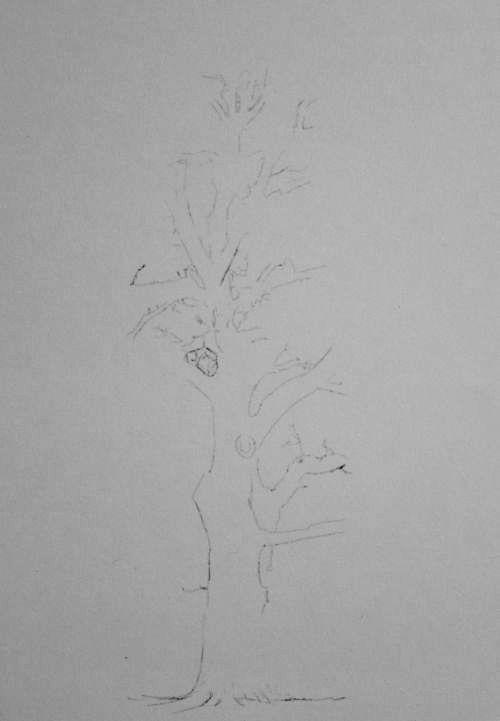 Tree Drawing  30